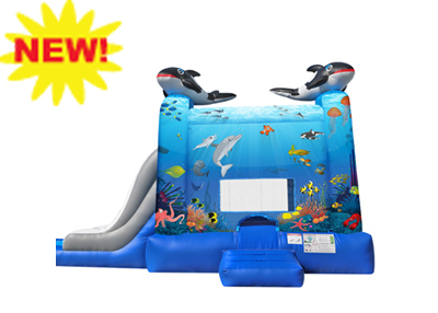 lite under the sea combo rental